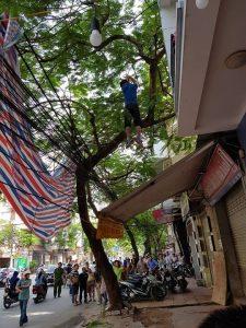 Hiện trường xảy ra vụ việc, ông Choi treo cổ trên cành cây ngay trước nhà thuê