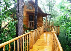 Original Treehouse Cottages - Khách sạn cây nằm ở thành phố Eureka Springs, bang Arkansas, Mỹ có 7 phòng. Giá mỗi đêm là 149 USD. Eureka Springs là một trong những phố núi đẹp nhất của Mỹ, vì thế nếu du khách thích khám phá, khách sạn độc đáo này cho khách cơ hội lạc vào thế giới núi rừng ngay cạnh thành phố. Phòng nghỉ ở đây được trang bị bể tắm sục riêng biệt, phòng có nhiều cửa sổ. Du khách sẽ tìm được góc nhìn toàn cảnh xuống dãy núi Ozarks phủ kín bởi những rừng thông.