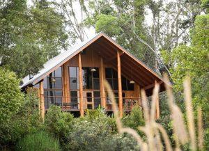 Nằm ở Tarzali, Queensland, Australia, Canopy là khách sạn trên cây có 7 phòng. Giá một đêm nghỉ tại đây là 290 USD. Các căn phòng này nằm giữa những tán cây tỏa rộng tới hơn 400.000 m2 thuộc rừng nhiệt đới dọc sông Ithaca. Vùng đất bao quanh khách sạn là nơi tạo ra lượng lớn hoa quả của vùng, thu hút nhiều loài động vật hoang dã như kangaroo Lumholtz hay chồn Green Possum... Chúng thường kiếm ăn xung quanh khách sạn nên du khách dễ dàng bắt gặp.