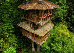 Finca Bellavista - Khách sạn nằm ở Golfito, Costa Rica với 9 phòng có giá phòng từ 100 USD một đêm. Đây là một ngôi nhà cây nằm ở độ cao hơn 27m, tọa lạc giữa những tán cây rộng lớn của rừng nhiệt đới Costa Rica, ven bờ biển Đại Tây Dương. Khách sạn không chỉ có vị trí độc đáo mà còn có nhiều dịch vụ cho du khách thử sức như leo núi, trượt zipline...