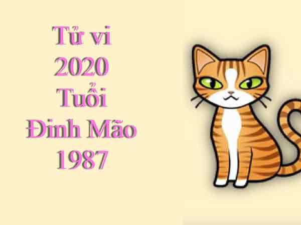 Tổng quan tử vi tuổi Đinh Mão năm 2020