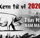 Tử vi tuổi Tân Hợi năm 2020 nam mạng